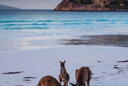 5 minuni naturale de vizitat în Australia - travelandbeauty.ro