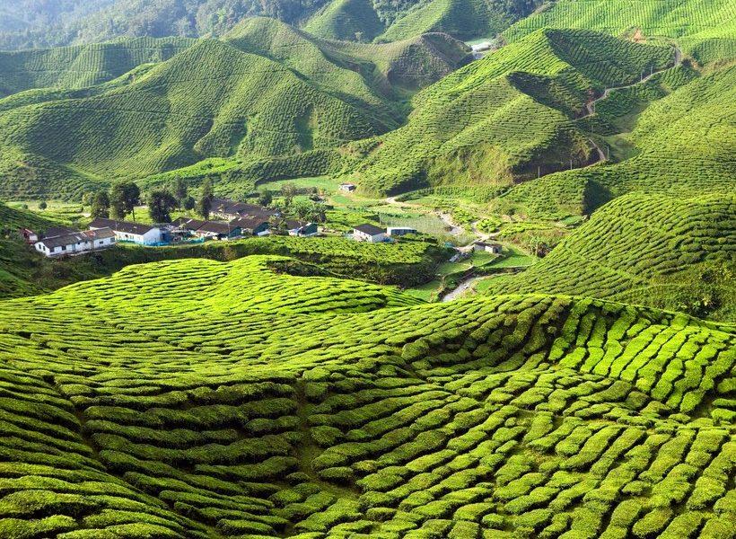 5 fotografii superbe care te vor inspira să vizitezi Malaezia - travelandbeauty.ro