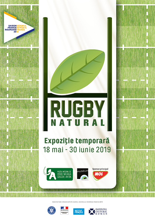 RUGBY, NATURAL! - travelandbeauty.ro